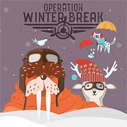 Operation Winter Break