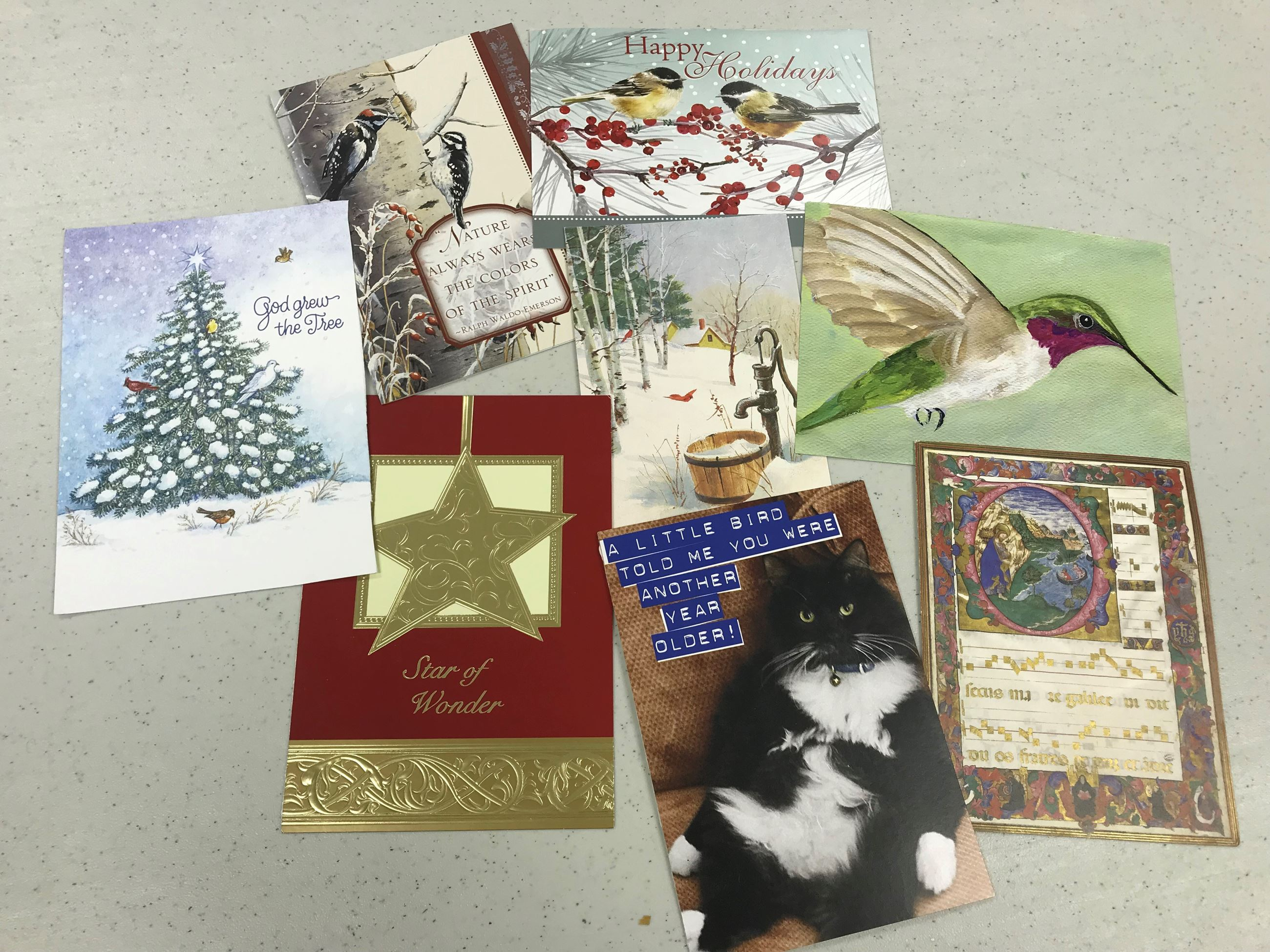 Greeting Cards Photo 2018 for boxes reuse lesson