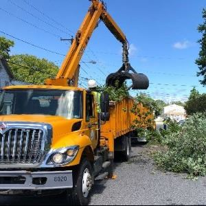 Public Works after tropical storm