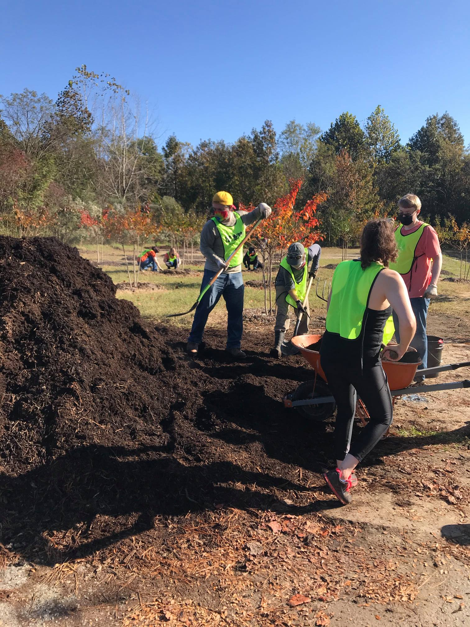 Volunteers shoveling mulch